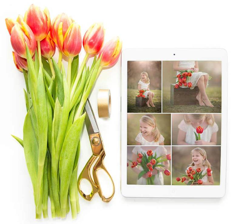 Collage of tulips alongside an iPad with photos.