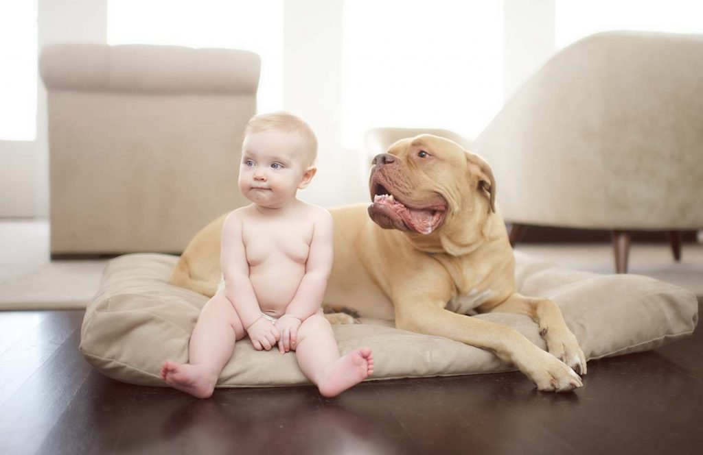 Baby girl and a dog sitting on the floor.