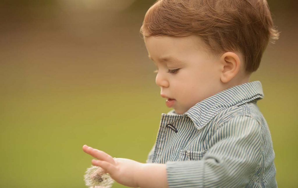 Little boy playing with a dandelion.