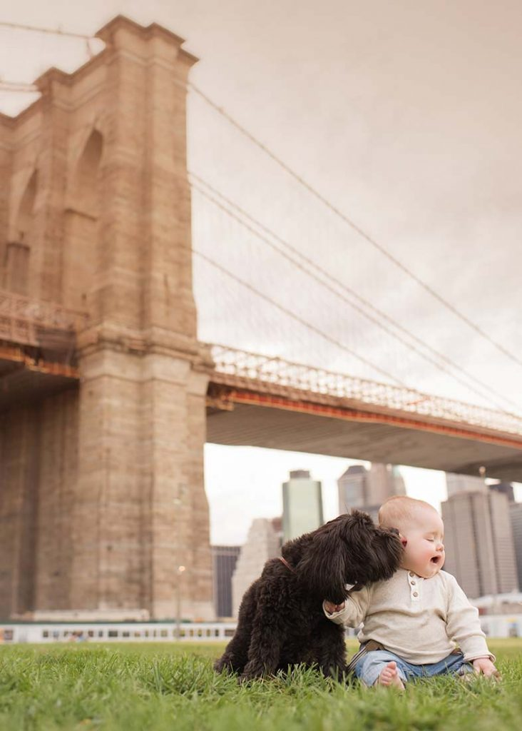 Puppy licking a toddler's face near Brooklyn Bridge.