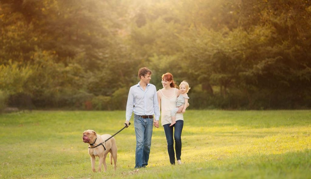 Lifestyle photo of a family walking in park with their baby and their dog.