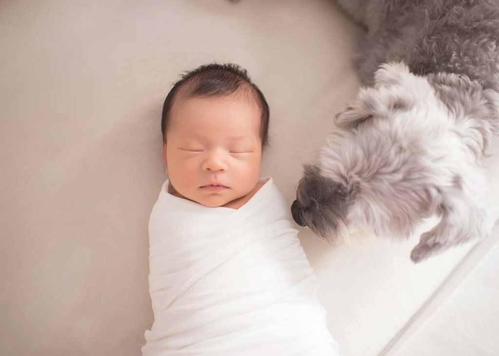 Newborn baby and a puppy posing for a portrait