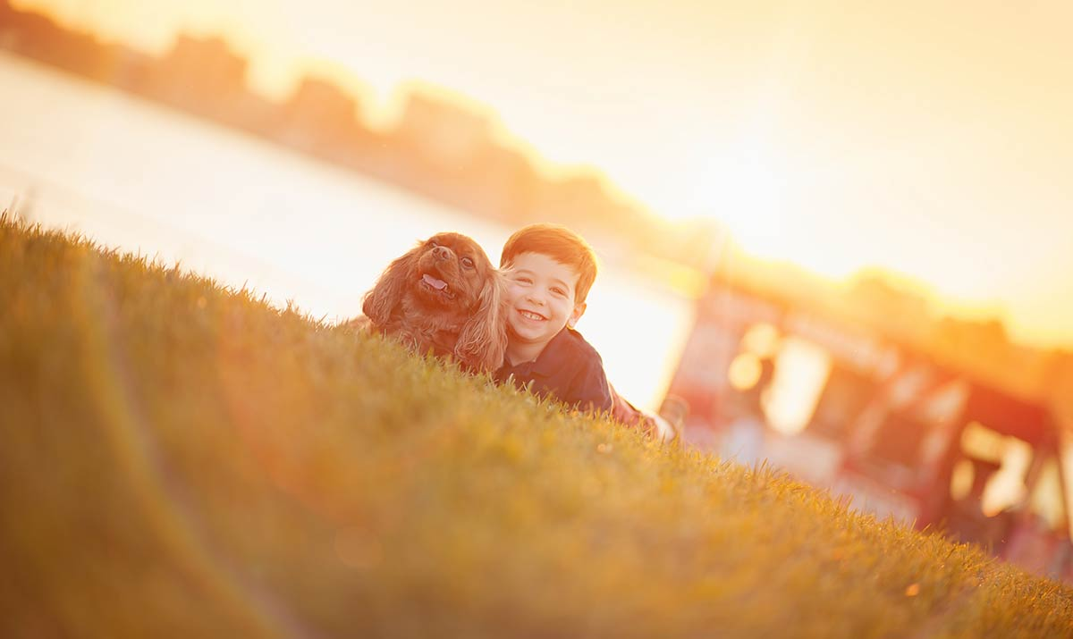 Boy and his dog fooling around in a park during a sunset