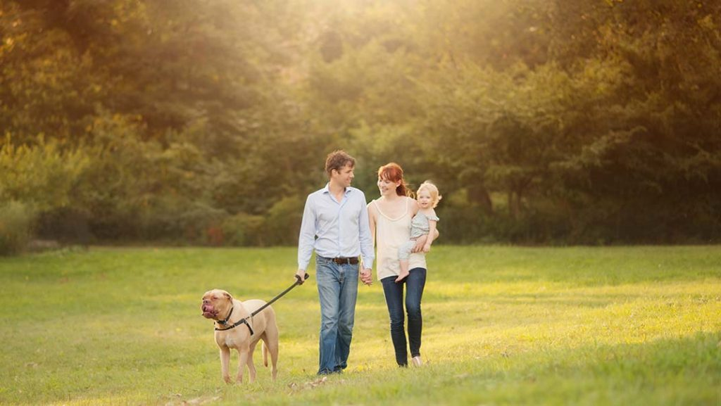 Manhattan family walking in Central Park with their dog and their baby daughter